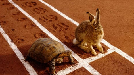 Editorial: Utilities playing catch-up to the hare